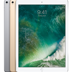 12.9-inch iPad Pro 64GB WiFi + Cellular